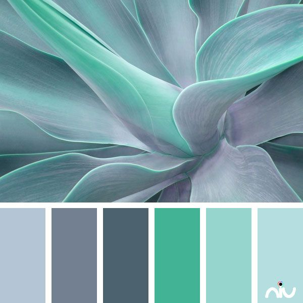 Gray Teal And Yellow Color Scheme Decor Inspiration: Turquoise 1