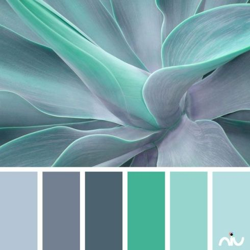 Turquoise Celadon Lilac