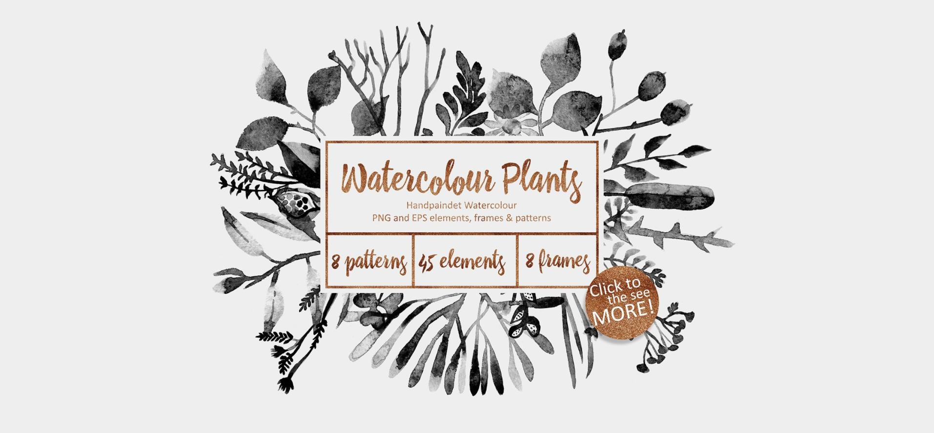 Watercolor Plants by Creative Market