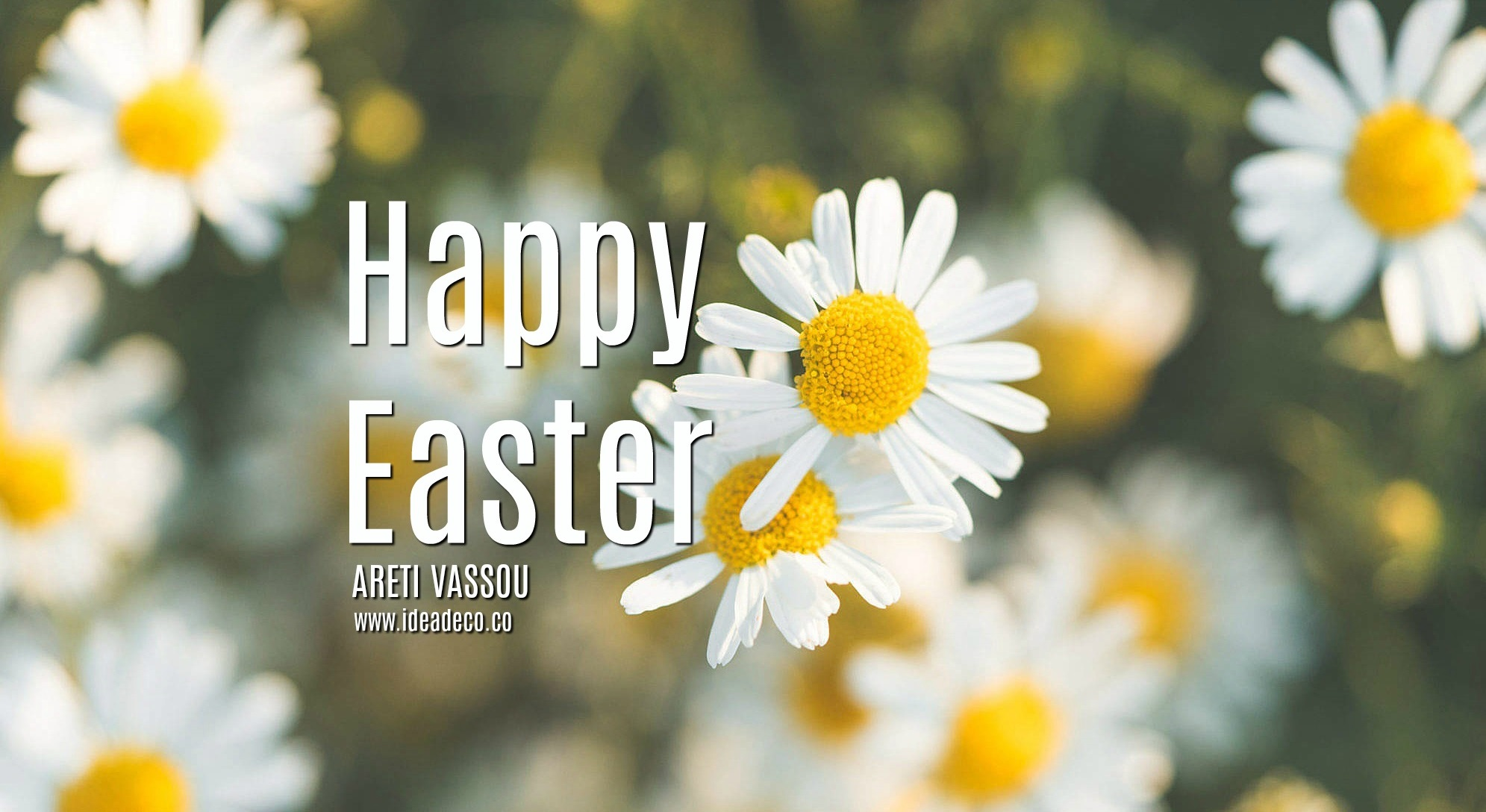 Happy Easter with Spring Daisy Flowers by Areti Vassou and Ideadeco Team